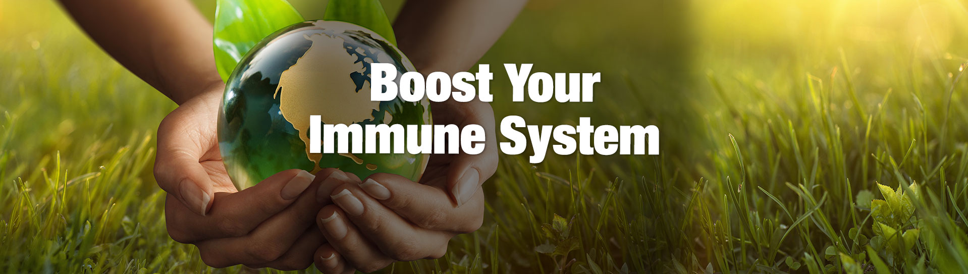 boost-your-immune-system